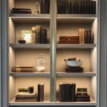Home Library idea classical shelving and storage